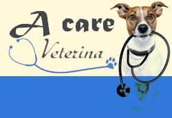 divizia_veterina